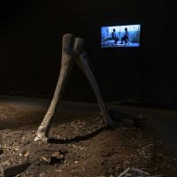 Clemente Castor, Príncipe de Paz (2019). Video instalación monocanal. Foto por Sergio Ivan Rebolledo, cortesía de Rivera