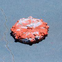 Ánima Correa, Rust Belt t(1), 2020. Concrete and earth pigments. Image courtesy ofCourt Space