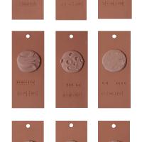 Alondra Zavaleta, Paleta de pieles (2018). Pieza sonora. Imagen cortesía de Seminario de Creación, Diseño y Gestión de Exposiciones