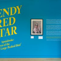 Installation view of the exhibition Wendy Red Star: Apsáalooke: Children of the Large-Beaked Bird